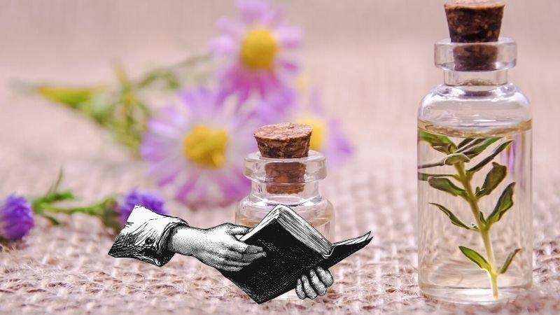 Os 11 óleos mais reverenciados na bíblia e seus usos históricos
